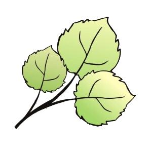 Правила и Рекомендации по общению на форумах Осинки